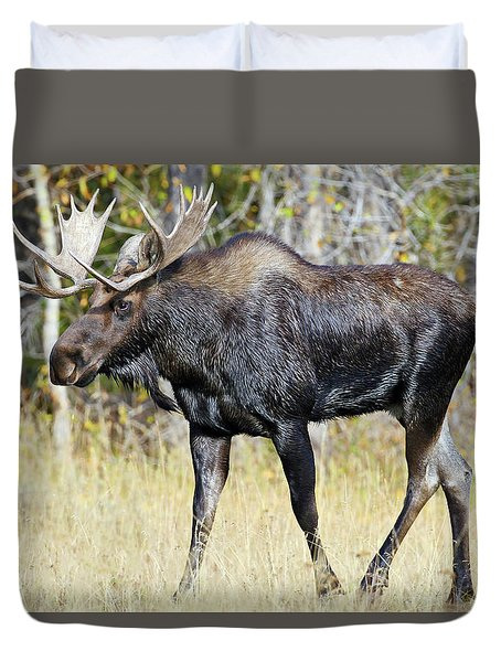 Moose On The Move Duvet Cover