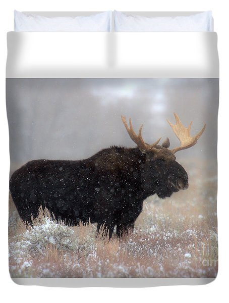 Duvet Cover featuring the photograph Moose Winter Silhouette by Adam Jewell