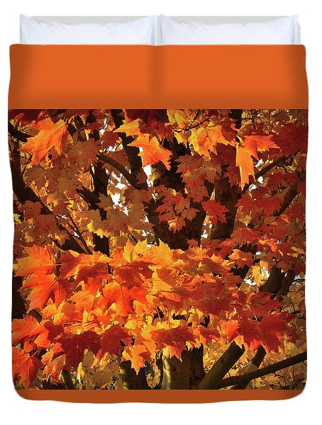 Duvet Cover featuring the photograph Moraine Hills Sugar Maple by Ray Mathis