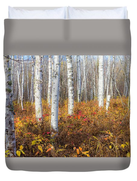Duvet Cover featuring the photograph More To The Under-story by Mary Amerman
