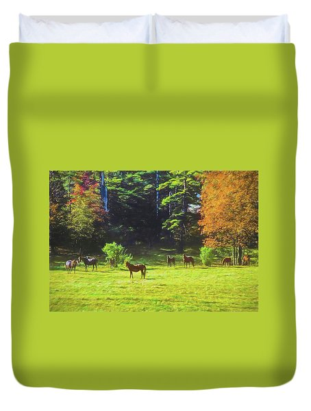 Morgan Horses In Autumn Pasture Duvet Cover