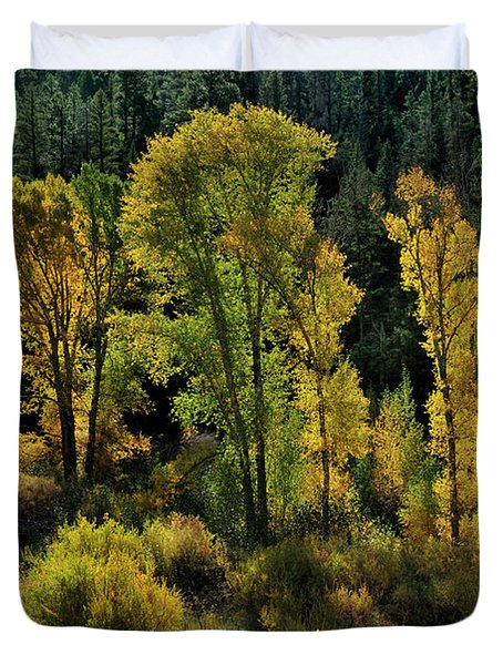 Duvet Cover featuring the photograph Morning Cottonwoods by Ron Cline