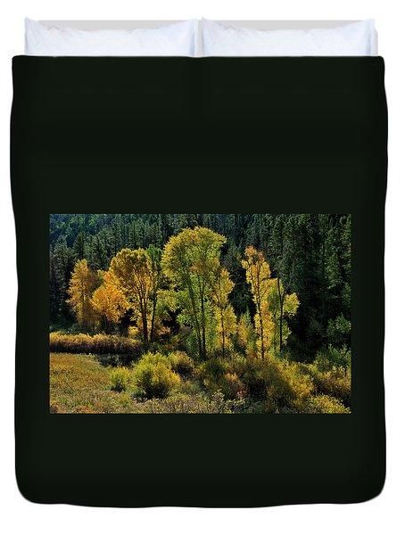 Morning Cottonwoods Duvet Cover