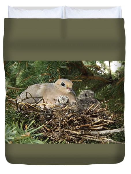 Morning Dove And Two Babys #2 Duvet Cover