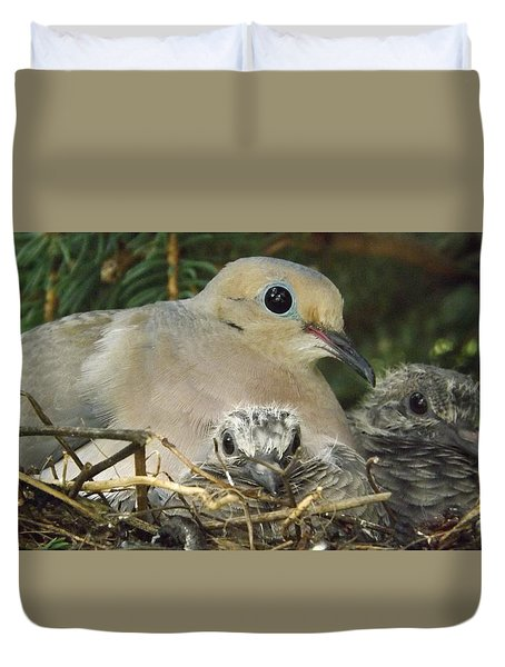 Morning Dove And Two Babys Duvet Cover
