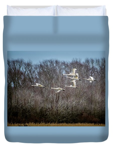 Morning Flight Of Tundra Swan Duvet Cover