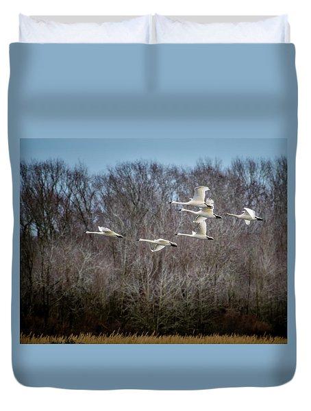 Morning Flight Of Tundra Swan Duvet Cover