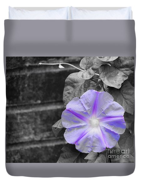 Morning Glory Flower Duvet Cover by Chad and Stacey Hall
