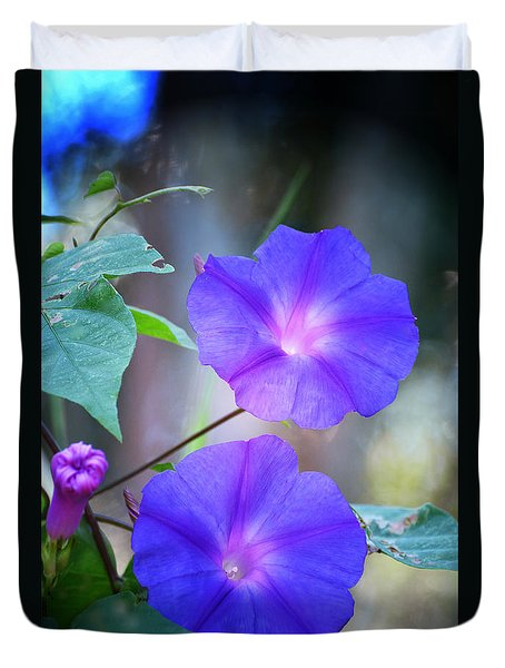 Morning Glory Duvet Cover by Kathy Baccari