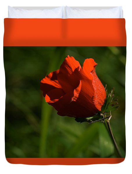 Duvet Cover featuring the photograph Morning Glory by Uri Baruch
