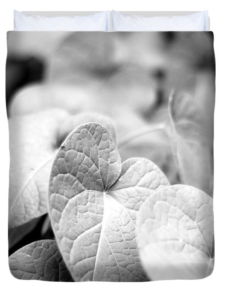 Morning Glory Vines Duvet Cover