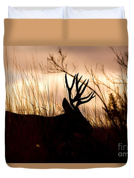 Morning Glow Duvet Cover