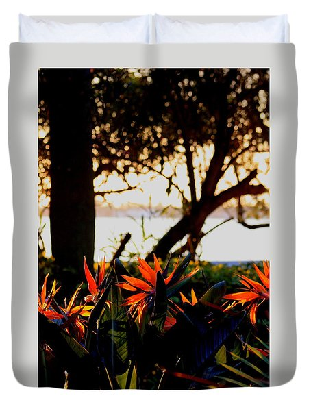 Duvet Cover featuring the photograph Morning In Florida by Diane Merkle