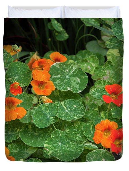 Morning In Longwood Gardens Duvet Cover