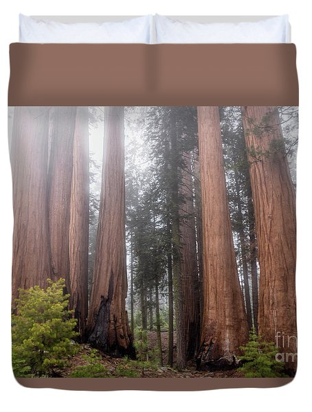 Duvet Cover featuring the photograph Morning Light In The Forest by Peggy Hughes