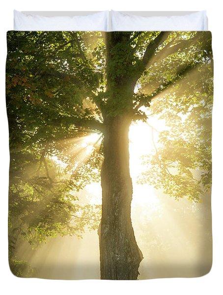Morning Light Shining Down Duvet Cover