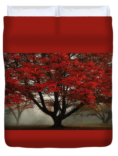 Duvet Cover featuring the photograph Morning Rays In The Forest by Ken Smith
