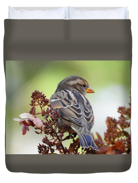 Morning Rest Duvet Cover