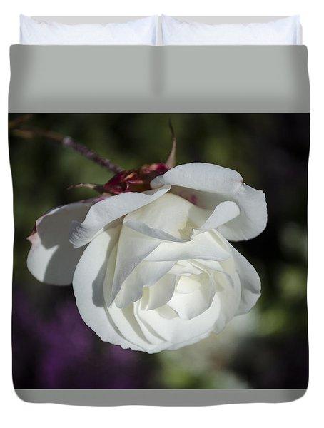 Morning Rose Duvet Cover by Dan Hefle
