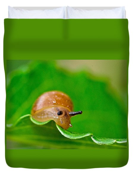 Morning Snail Duvet Cover