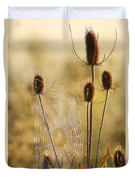 Morning Spider Web Duvet Cover