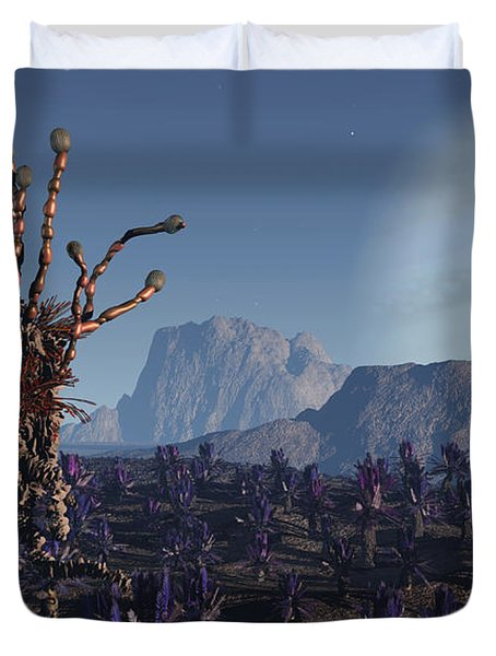 Morning Stroll Duvet Cover by Richard Rizzo