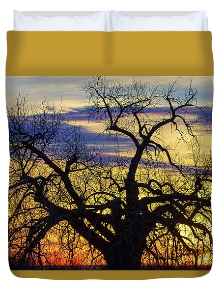 Duvet Cover featuring the photograph Morning Woods by James BO Insogna