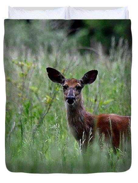 Morninng Deer Duvet Cover