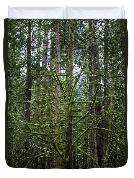 Moss Covered Tree Duvet Cover