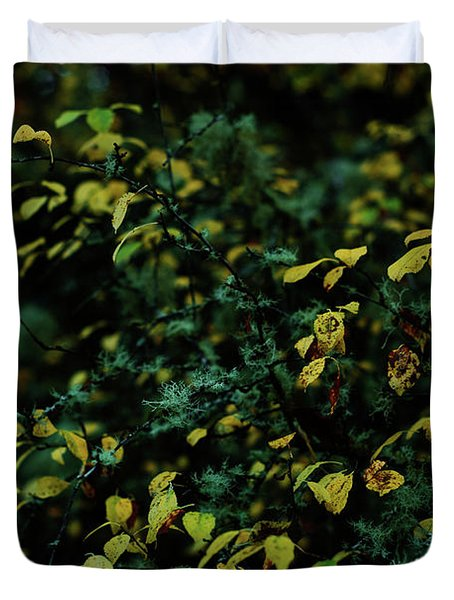 Moss In Colors Duvet Cover