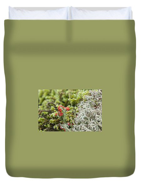 Mossy Forest Duvet Cover