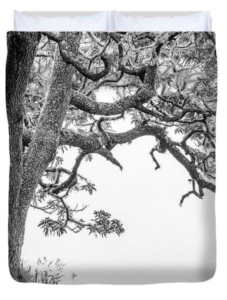 Mossy Tree Duvet Cover