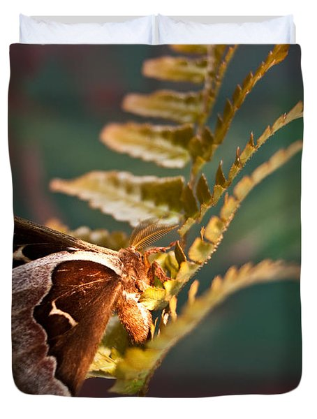Moth At Sunrise Duvet Cover