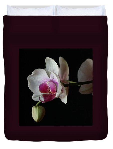 Duvet Cover featuring the photograph Moth Orchid 1 by Marna Edwards Flavell