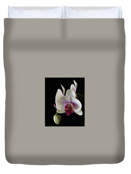 Duvet Cover featuring the photograph Moth Orchid 2 by Marna Edwards Flavell