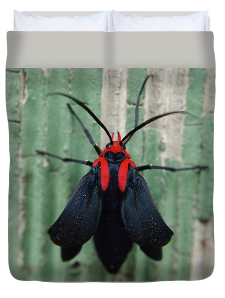 Moth Wearing Red Stole Duvet Cover by Adria Trail