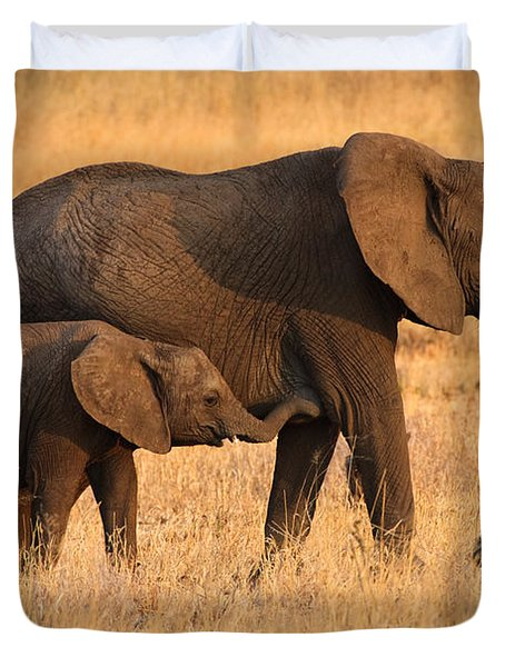 Mother And Baby Elephants Duvet Cover