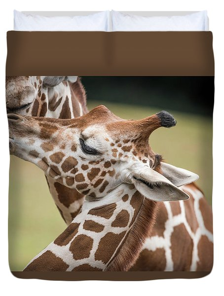 Mother And Baby Giraffes Duvet Cover