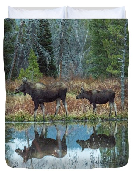 Mother And Baby Moose Reflection Duvet Cover