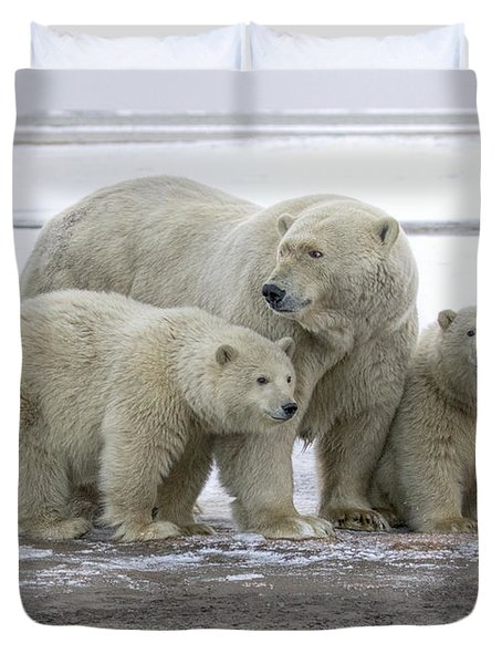 Mother And Cubs In The Arctic Duvet Cover