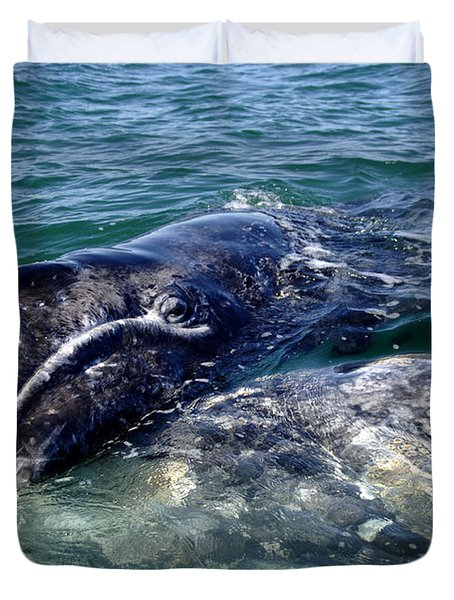 Mother Grey Whale And Baby Calf Duvet Cover