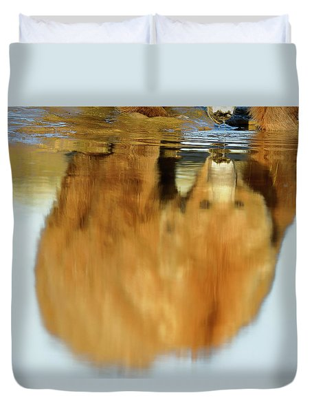Mother Grizzly Reflection Duvet Cover