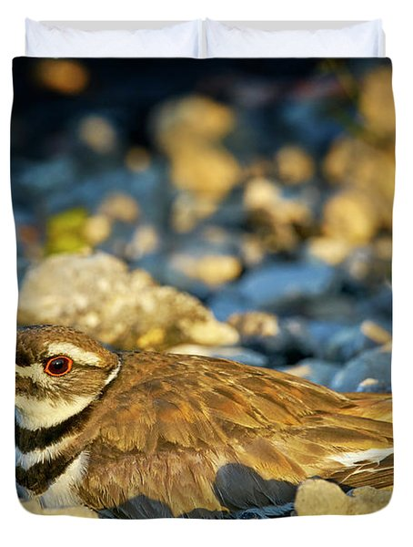 Mother Killdeer 2 Duvet Cover
