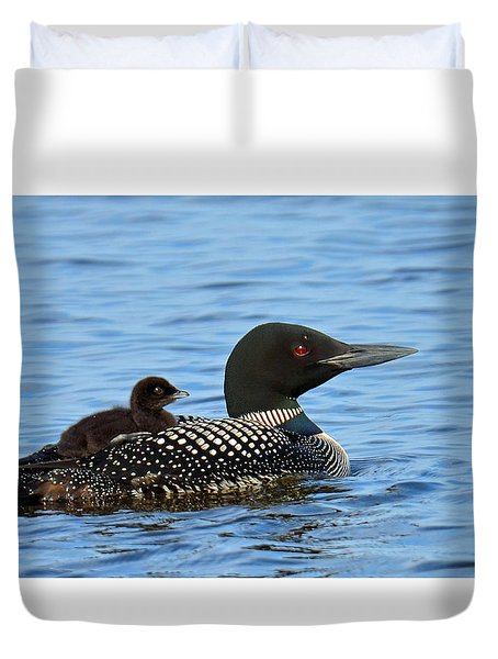 Mother Loon And Her Baby Duvet Cover by Rodney Campbell