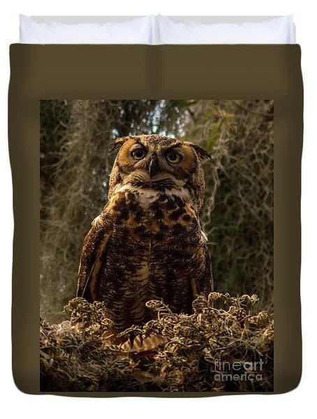 Mother Owl Posing Duvet Cover by Jane Axman