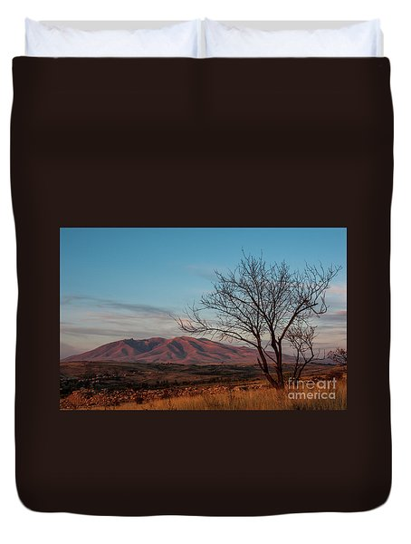 Mount Ara At Sunset With Dead Tree In Front, Armenia Duvet Cover
