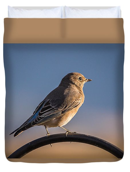 Mountain Bluebird At Sunset Duvet Cover