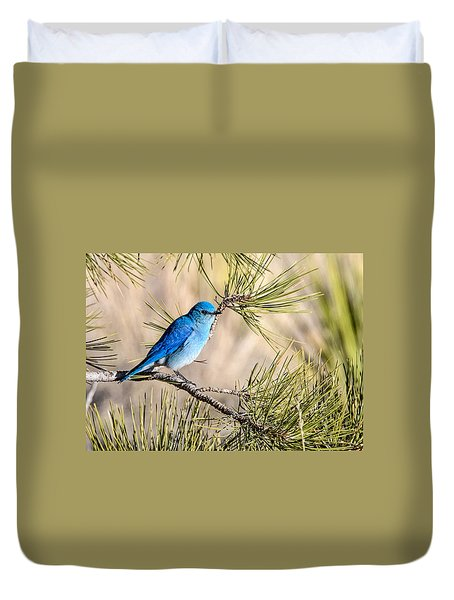 Mountain Bluebird In A Pine Duvet Cover
