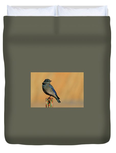 Mountain Bluebird Duvet Cover
