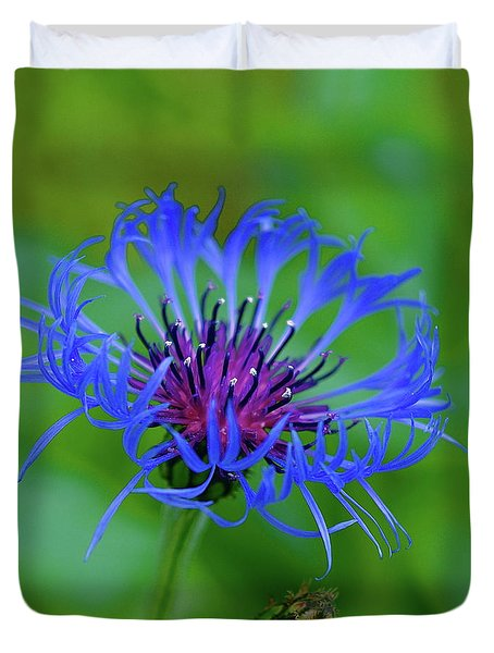 Mountain Cornflower Duvet Cover